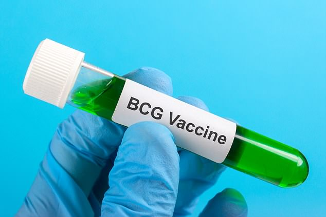 The BCG vaccines may be a solution to type 1 diabetes, new research suggests (stock)
