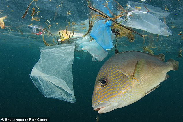 It is estimated that about 2 to 5 per cent of all plastic produced ends up in the sea